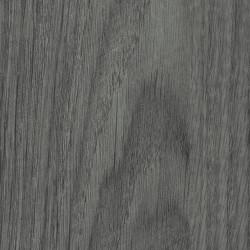 Ąžuolas sidabrinis