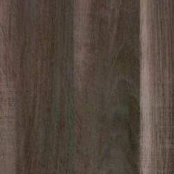 Ąžuolas Dakota tamsus